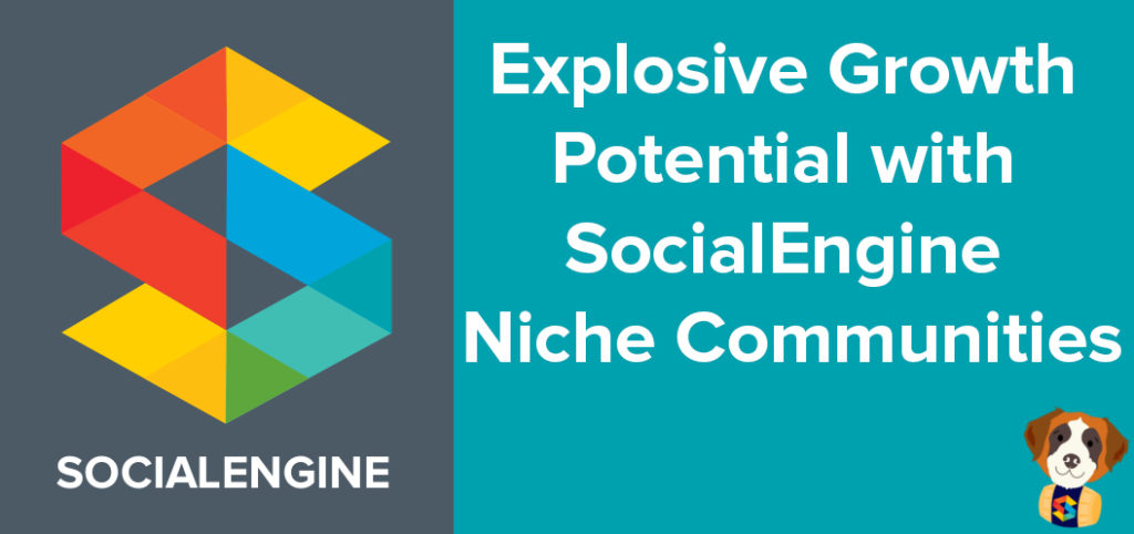 Growth with SocialEngine niches
